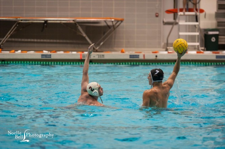Swim Team, Water Polo, Bearden High School, Senior Pictures, Event Photography, Action