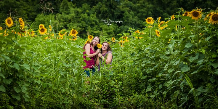 Senior Pictures Noelle Bell Photography Knoxville TN Sunflower Field July_0085.1b